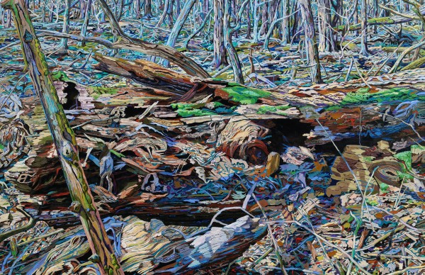 dery,ausgetrockneter-wald,2015