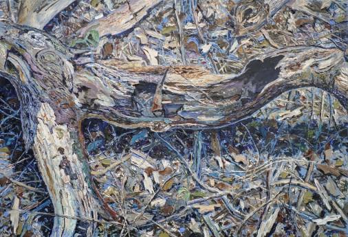 dery,waldboden _II,2013,55x85cm,ooc