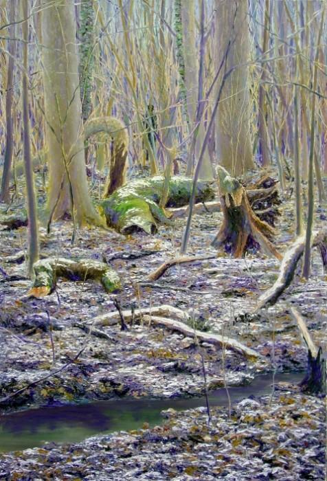 konstantin déry,auenwald mit raureif,2011, 80x55cm,öl a.lw